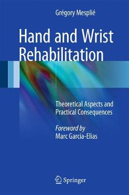Hand and Wrist Rehabilitation: Theoretical Aspects and Practical Consequences (Hardback)