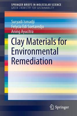 Clay Materials for Environmental Remediation - SpringerBriefs in Green Chemistry for Sustainability (Paperback)