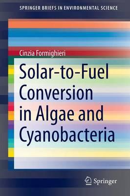 Solar-to-Fuel Conversion in Algae and Cyanobacteria - SpringerBriefs in Environmental Science (Paperback)