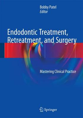 Endodontic Treatment, Retreatment, and Surgery: Mastering Clinical Practice (Hardback)