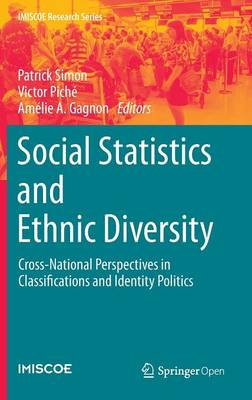 Social Statistics and Ethnic Diversity: Cross-National Perspectives in Classifications and Identity Politics - IMISCOE Research Series (Hardback)