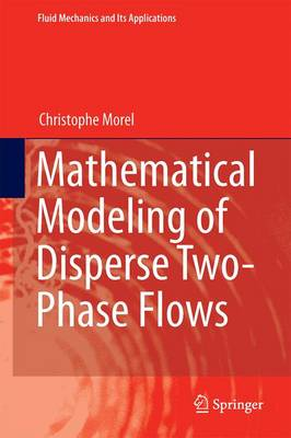 Mathematical Modeling of Disperse Two-Phase Flows - Fluid Mechanics and Its Applications 114 (Hardback)
