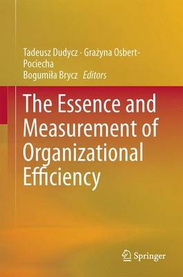The Essence and Measurement of Organizational Efficiency - Springer Proceedings in Business and Economics (Hardback)