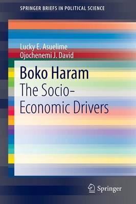 Boko Haram: The Socio-Economic Drivers - SpringerBriefs in Political Science (Paperback)