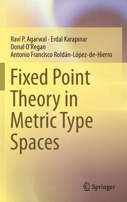 Fixed Point Theory in Metric Type Spaces (Hardback)