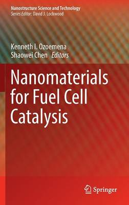 Nanomaterials for Fuel Cell Catalysis - Nanostructure Science and Technology (Hardback)