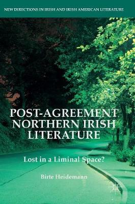 Post-Agreement Northern Irish Literature: Lost in a Liminal Space? - New Directions in Irish and Irish American Literature (Hardback)