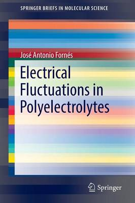 Electrical Fluctuations in Polyelectrolytes - SpringerBriefs in Molecular Science (Paperback)