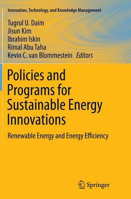 Policies and Programs for Sustainable Energy Innovations: Renewable Energy and Energy Efficiency - Innovation, Technology, and Knowledge Management (Paperback)