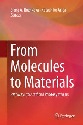 From Molecules to Materials: Pathways to Artificial Photosynthesis (Paperback)