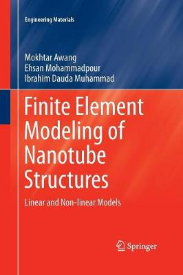 Finite Element Modeling of Nanotube Structures: Linear and Non-linear Models - Engineering Materials (Paperback)