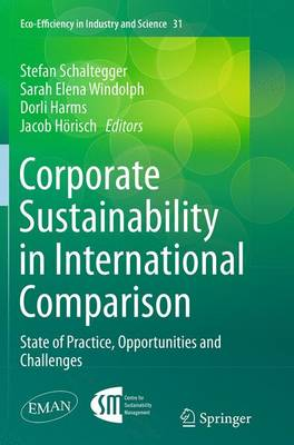 Corporate Sustainability in International Comparison: State of Practice, Opportunities and Challenges - Eco-Efficiency in Industry and Science 31 (Paperback)