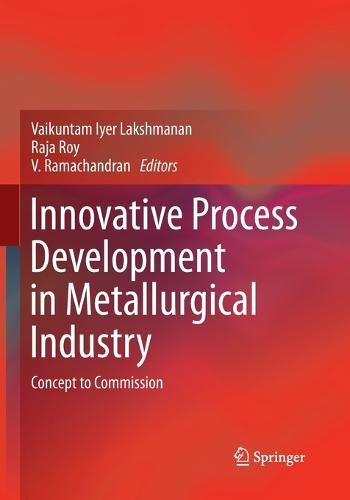 Innovative Process Development in Metallurgical Industry: Concept to Commission (Paperback)