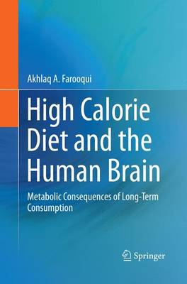 High Calorie Diet and the Human Brain: Metabolic Consequences of Long-Term Consumption (Paperback)