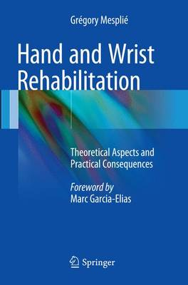 Hand and Wrist Rehabilitation: Theoretical Aspects and Practical Consequences (Paperback)
