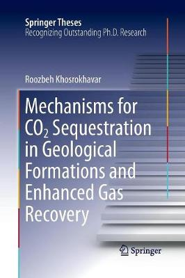 Mechanisms for CO2 Sequestration in Geological Formations and Enhanced Gas Recovery - Springer Theses (Paperback)