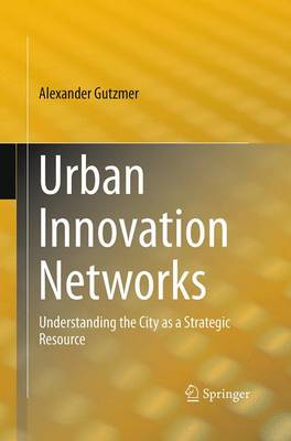 Urban Innovation Networks: Understanding the City as a Strategic Resource (Paperback)
