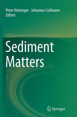 Sediment Matters (Paperback)