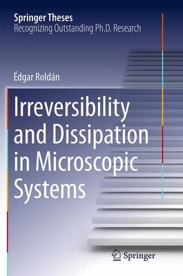 Irreversibility and Dissipation in Microscopic Systems - Springer Theses (Paperback)
