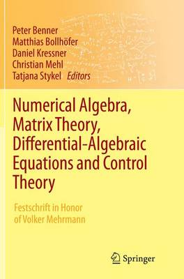 Numerical Algebra, Matrix Theory, Differential-Algebraic Equations and Control Theory: Festschrift in Honor of Volker Mehrmann (Paperback)