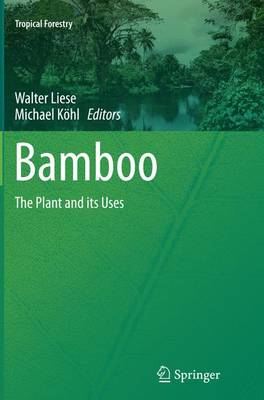 Bamboo: The Plant and its Uses - Tropical Forestry (Paperback)