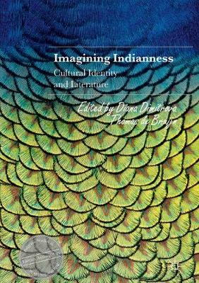 Imagining Indianness: Cultural Identity and Literature - Palgrave Studies in Literary Anthropology (Hardback)