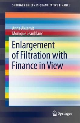 Enlargement of Filtration with Finance in View - SpringerBriefs in Quantitative Finance (Paperback)