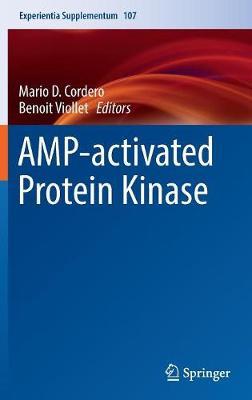 AMP-activated Protein Kinase - Experientia Supplementum 107 (Hardback)
