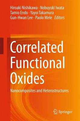 Correlated Functional Oxides: Nanocomposites and Heterostructures (Hardback)