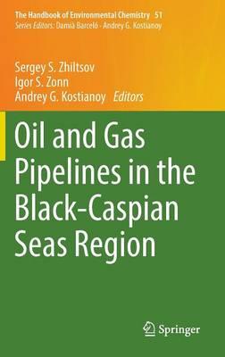 Oil and Gas Pipelines in the Black-Caspian Seas Region - The Handbook of Environmental Chemistry 51 (Hardback)