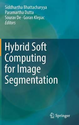 Hybrid Soft Computing for Image Segmentation (Hardback)