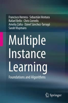 Multiple Instance Learning: Foundations and Algorithms (Hardback)