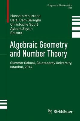 Algebraic Geometry and Number Theory: Summer School, Galatasaray University, Istanbul, 2014 - Progress in Mathematics 321 (Hardback)