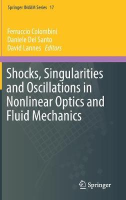 Shocks, Singularities and Oscillations in Nonlinear Optics and Fluid Mechanics - Springer INdAM Series 17 (Hardback)