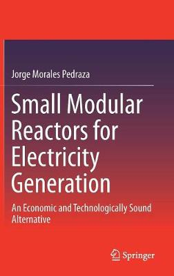 Small Modular Reactors for Electricity Generation: An Economic and Technologically Sound Alternative (Hardback)
