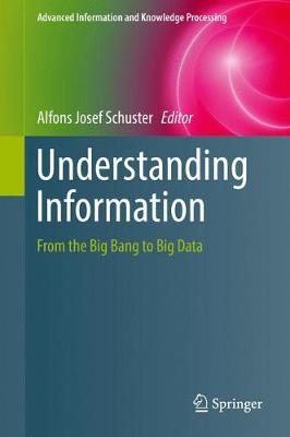 Understanding Information: From the Big Bang to Big Data - Advanced Information and Knowledge Processing (Hardback)
