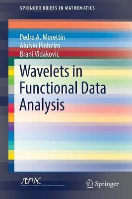 Wavelets in Functional Data Analysis - SpringerBriefs in Mathematics (Paperback)