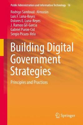 Building Digital Government Strategies: Principles and Practices - Public Administration and Information Technology 16 (Hardback)