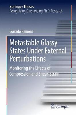Metastable Glassy States Under External Perturbations: Monitoring the Effects of Compression and Shear-strain - Springer Theses (Hardback)