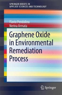 Graphene Oxide in Environmental Remediation Process - SpringerBriefs in Applied Sciences and Technology (Paperback)