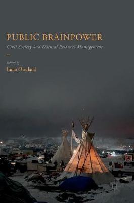 Public Brainpower: Civil Society and Natural Resource Management (Hardback)