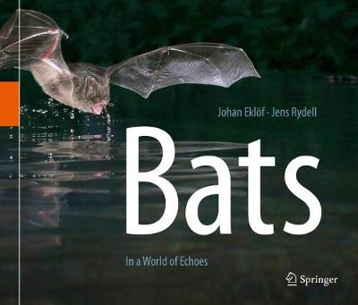 Bats: In a World of Echoes (Hardback)