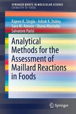 Analytical Methods for the Assessment of Maillard Reactions in Foods - SpringerBriefs in Molecular Science (Paperback)