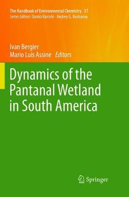Dynamics of the Pantanal Wetland in South America - The Handbook of Environmental Chemistry 37 (Paperback)