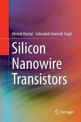 Silicon Nanowire Transistors (Paperback)