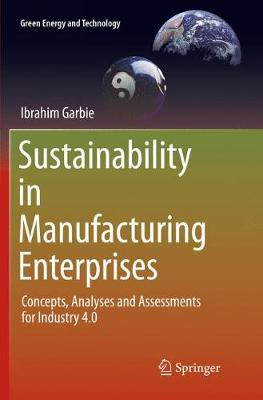 Sustainability in Manufacturing Enterprises: Concepts, Analyses and Assessments for Industry 4.0 - Green Energy and Technology (Paperback)