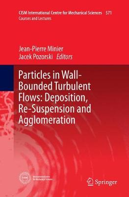 Particles in Wall-Bounded Turbulent Flows: Deposition, Re-Suspension and Agglomeration - CISM International Centre for Mechanical Sciences 571 (Paperback)