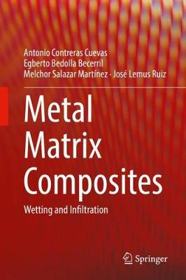 Metal Matrix Composites: Wetting and Infiltration (Hardback)