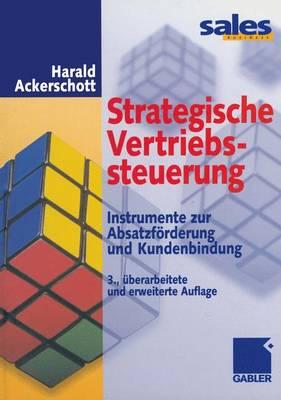 Strategische Vertriebssteuerung (Paperback)