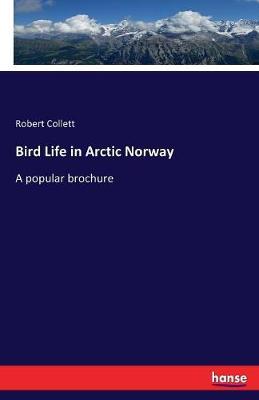 Bird Life in Arctic Norway (Paperback)